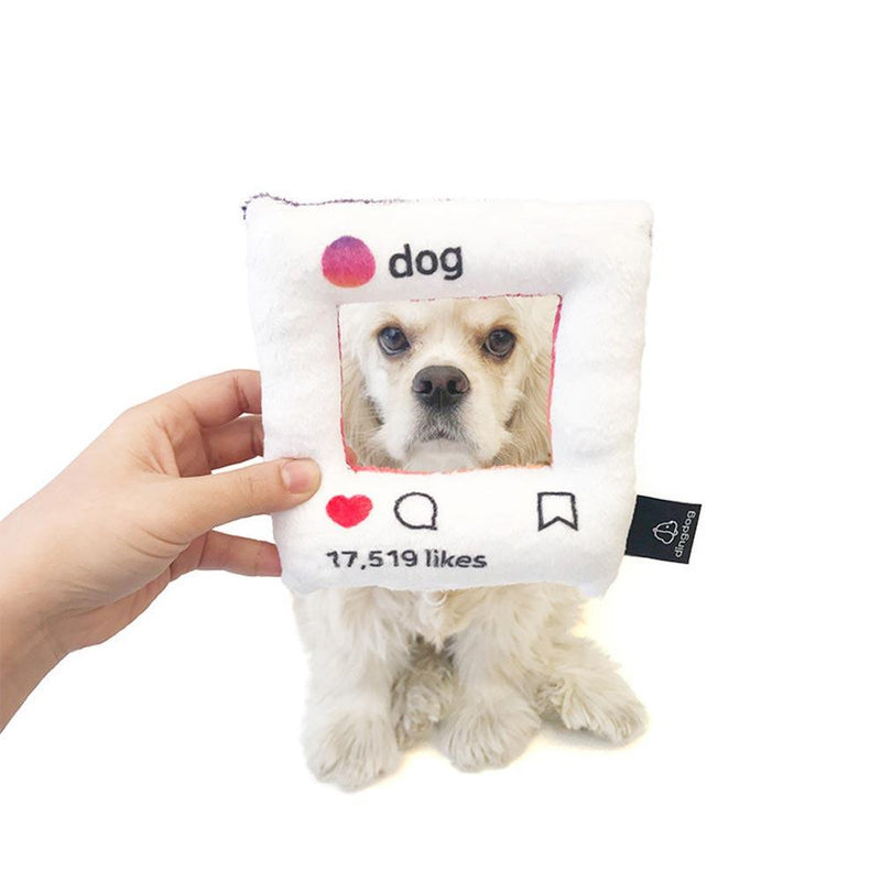 Ding Dog Dogstagram Toy - CreatureLand