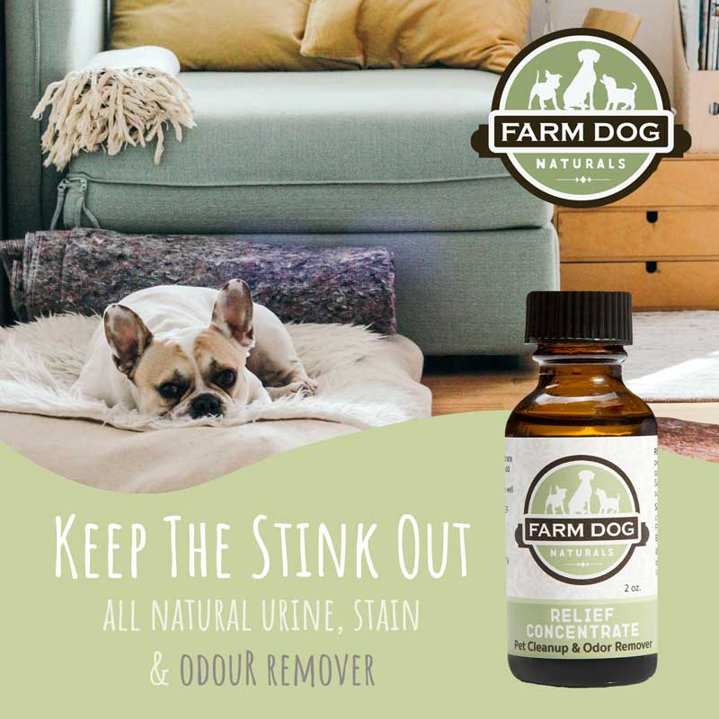 Farm Dog Naturals Relief Concentrate - Pet Cleanup & Odor Remover - CreatureLand