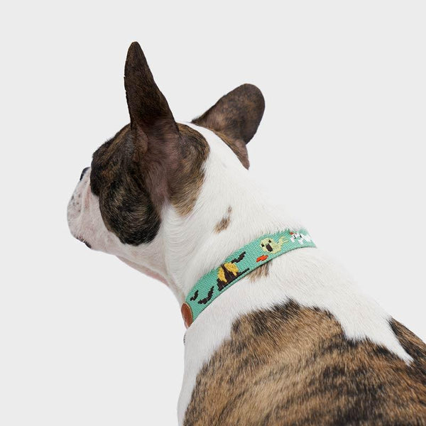 Howlpot Adventure Series Collar - Ghost - CreatureLand