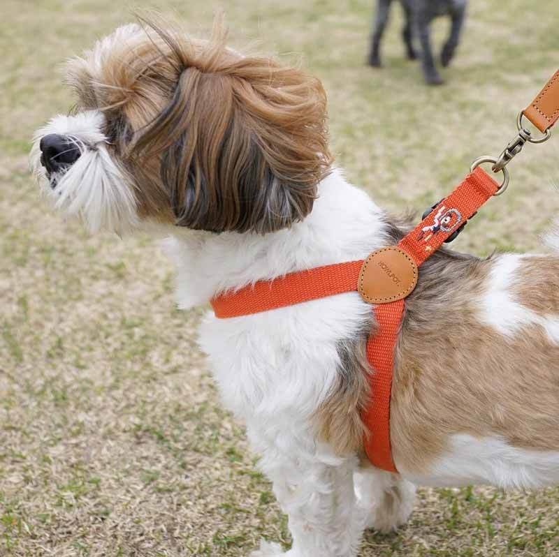 Howlpot Adventure Series Harness - Mars - CreatureLand