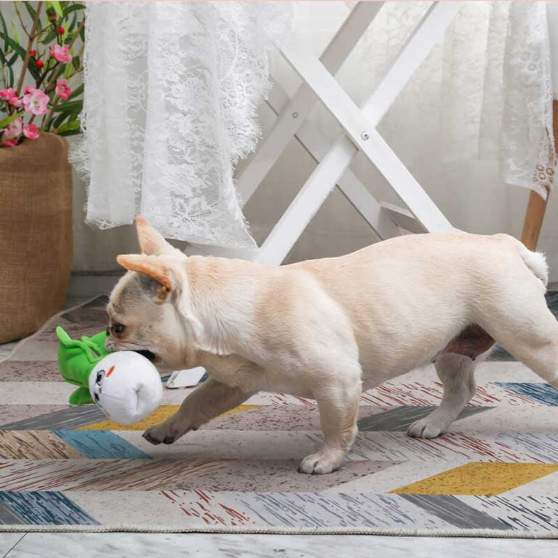 HugSmart Feisty Veggie – Bok Choy Dog Toy - CreatureLand