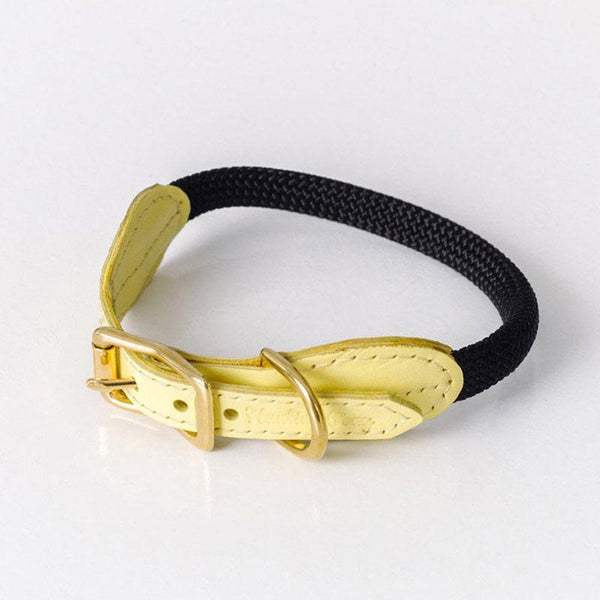 Hunting Pony PONY MACARONI LEATHER DOG COLLAR - YELLOW - CreatureLand