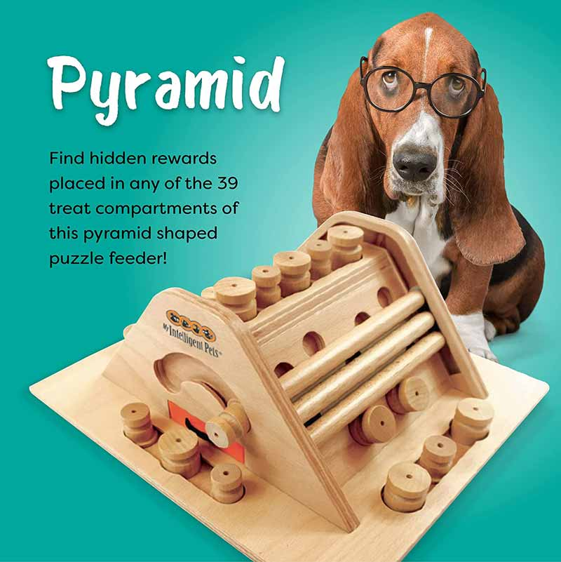 My Intelligent Pets Interactive Puzzle Game - Pyramid - CreatureLand