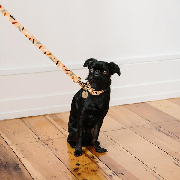 Nice Digs TIGGY LEATHER DOG LEASH - FOREST - CreatureLand