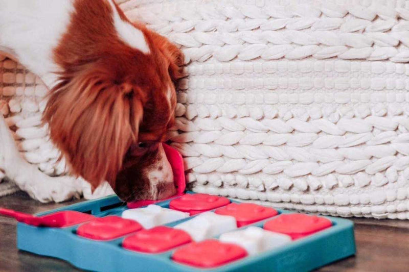 Nina Ottoson 15% OFF: Dog Brick Strategy Game - CreatureLand