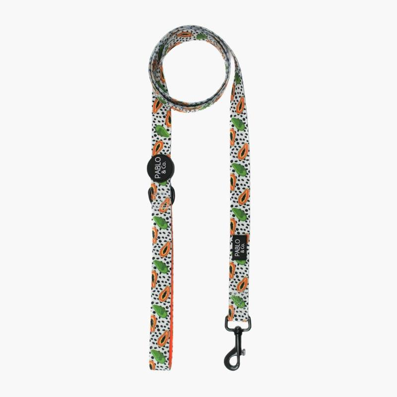 PABLO & Co. Pet Leash - Papaya - CreatureLand