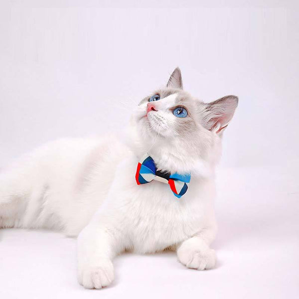Petshy Cat Bow Tie Collar - CreatureLand