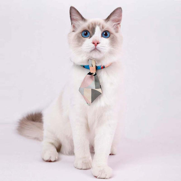 Petshy Cat Tie Collar (3 Colours) - CreatureLand