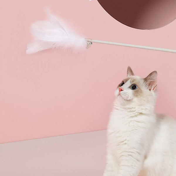 Petshy Feather Wand Cat Teaser (3 colours) - CreatureLand