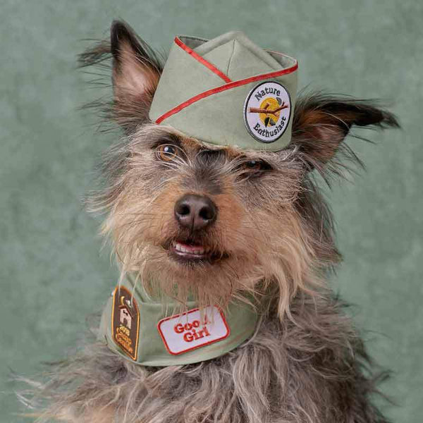 Scout's Honour Good Girl Merit Badge - CreatureLand