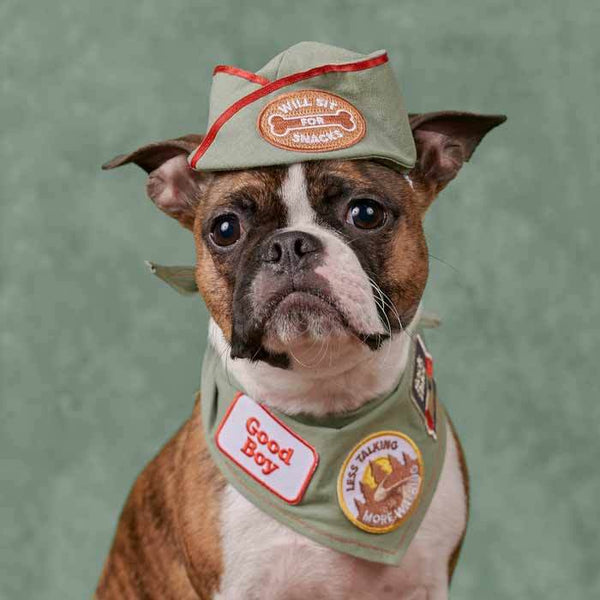 Scout's Honour Will Sit for Snacks Merit Badge - CreatureLand