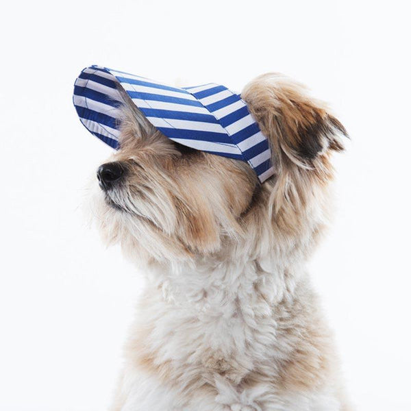 Sniff's Friends Stripe Sun Visor - Blue - CreatureLand