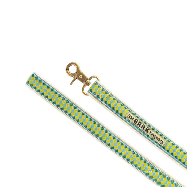The Bark Co. Pineapple Dog Leash - CreatureLand