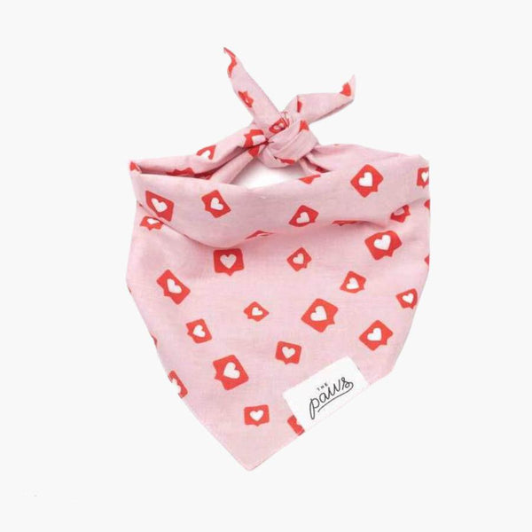 The Paws Insta Love Bandana - CreatureLand