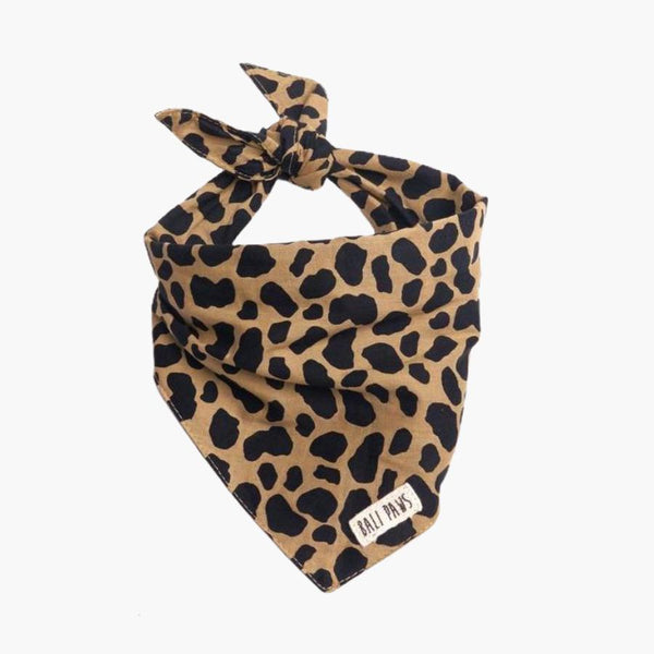 The Paws Roaring Jungle Bandana - CreatureLand