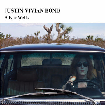 Silver Wells