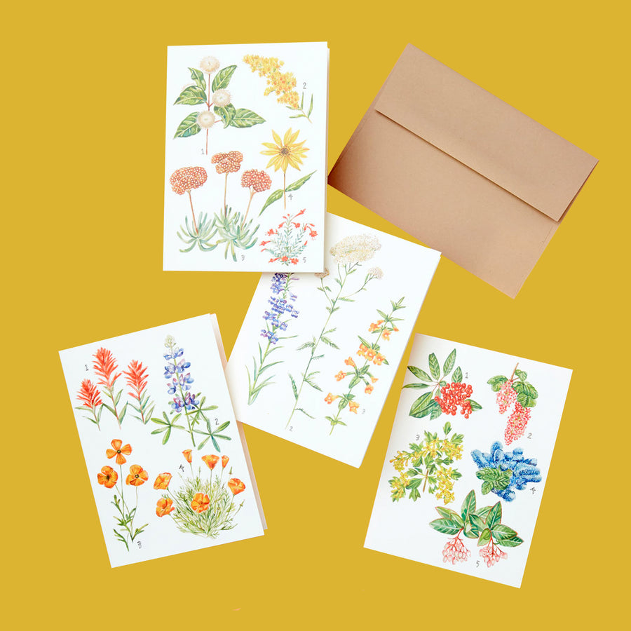 California Botany - Card Set of 8