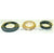 Steering Seal Kit P/N 220089915