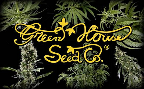 Sativa/Indica Mix B Mix Pack Cannabis Seeds