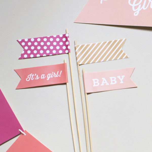 Baby Girl Large Flags