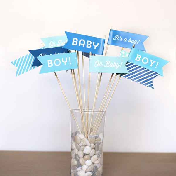 Baby Boy Large Flags