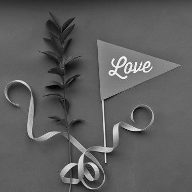 Love Pennant Photo Prop - Script