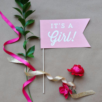 Photo Prop - It's a Girl - Baby Shower Collection