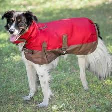 Dog Jacket/Blanket By OUTDOOR DOG