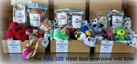 The DOGS Box