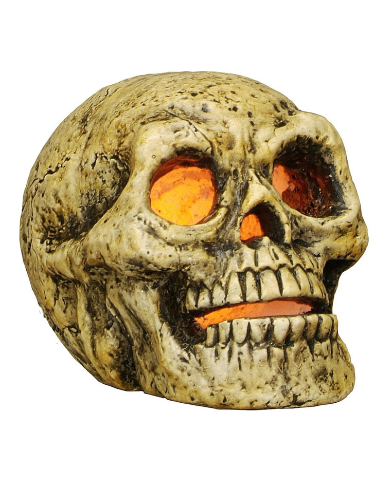 Skeleton Skull Light