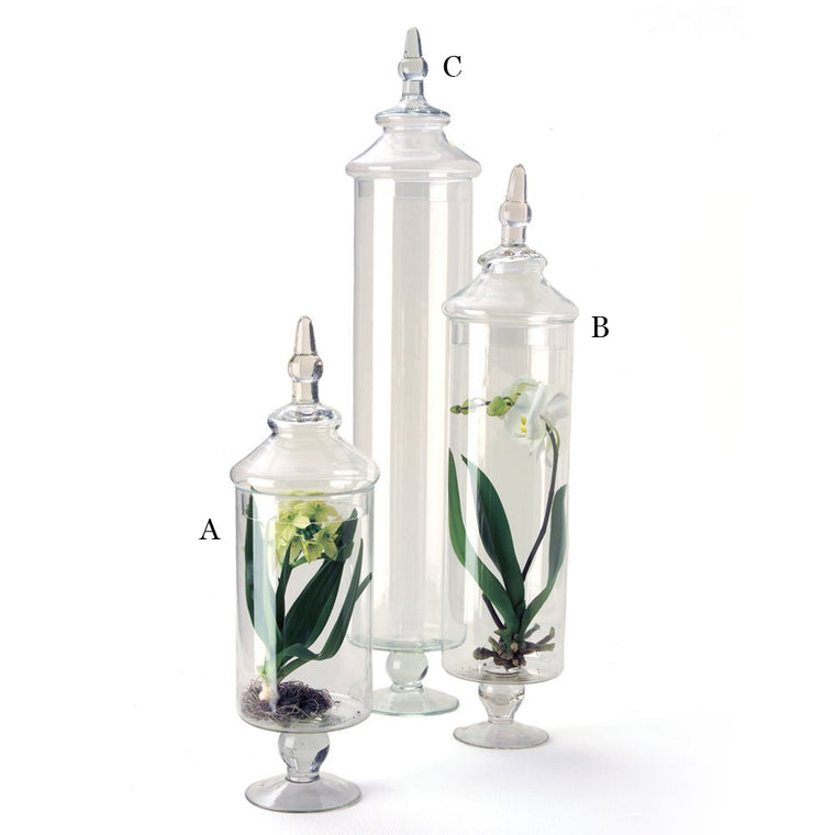 Chateau Tall Botanical Jars