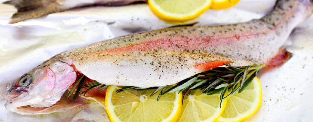 Why You Should NEVER Eat Farm-Raised Fish