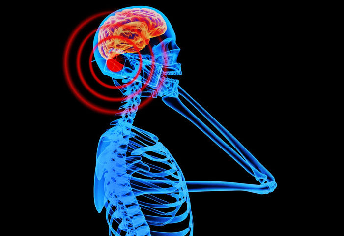 Protecting Yourself From Electromagnetic Pollution (EMF's)