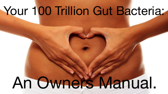 An Owners Manual For Your 100 Trillion Gut Bacteria