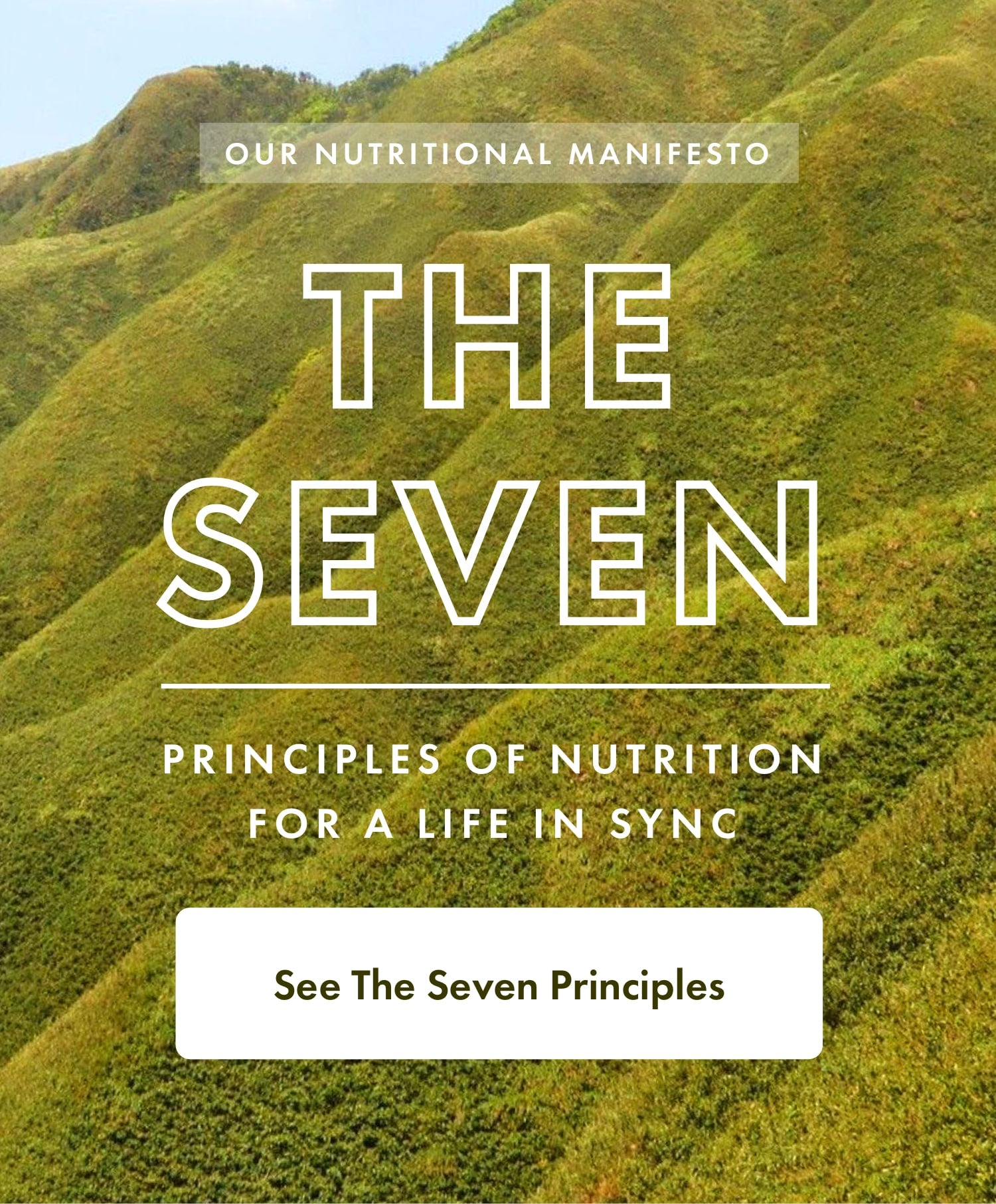 THE SEVEN | Principles Of Nutrition For A Life In Sync