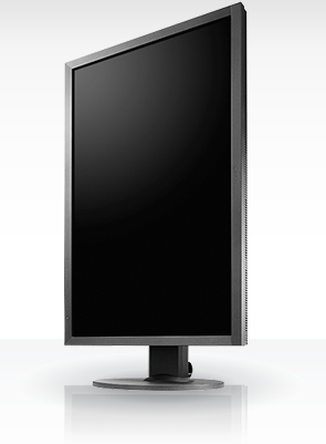 Eizo ColorEdge CS2420 24in IPS Monitor Vertical