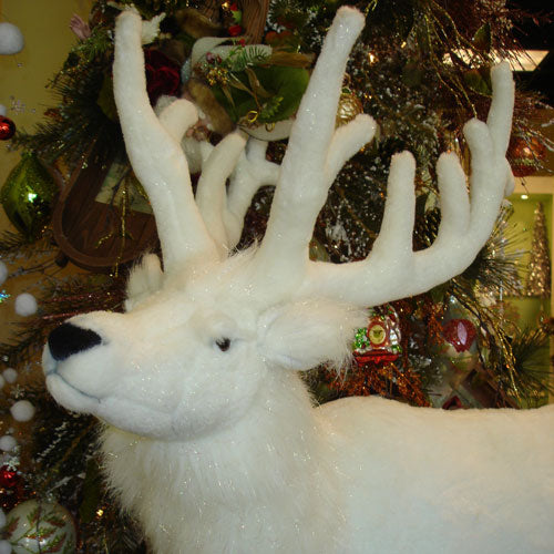 close up of rosie the reindeer's face showing winter white fur with white antlers, black eyes, nose and mouth