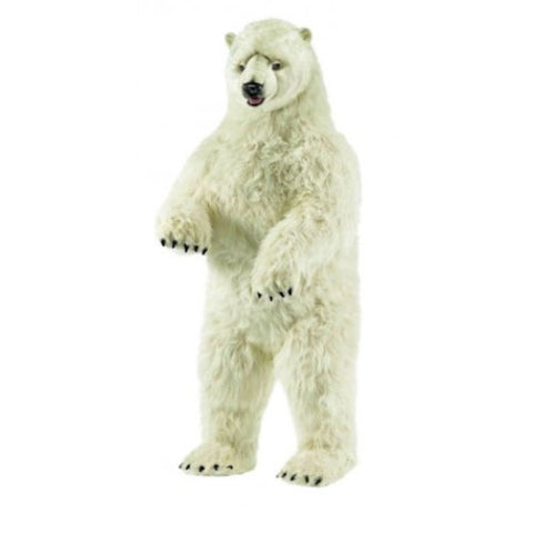 prince the polar bear is shown standing in white