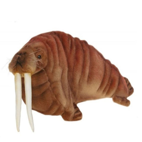 wally the walrus shown in brown sugar brown with white long teeth and whiskers