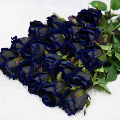 Midnight blue Rose seds Ideal DIY House Flower Garden 10 PCS