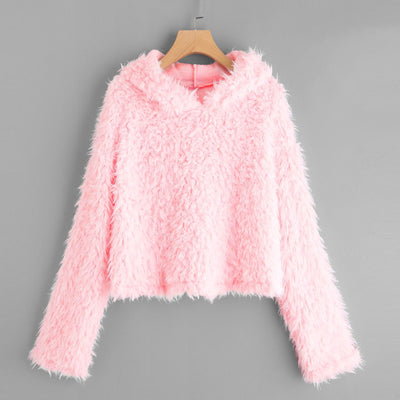 Womens Long Sleeve Plush Hooded Round Neck Sweatshirt Blouse Tops