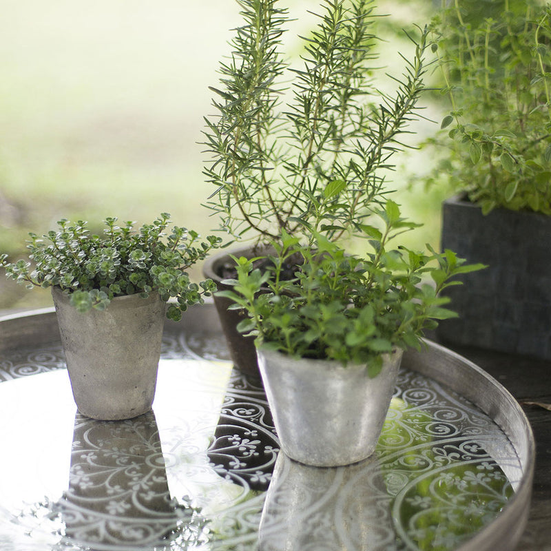mirror tray with herb pots reflected in its patterned surface