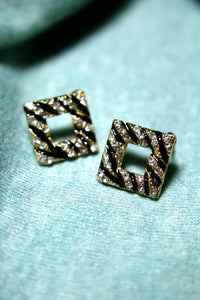 Wild Zebra Streaks Earrings