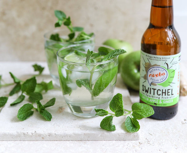 Apple and Ginger Switchel Mojito
