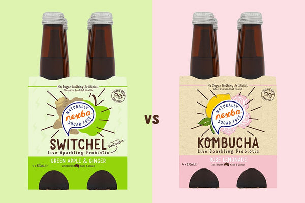 Powerful probiotic showdown: switchel vs kombucha