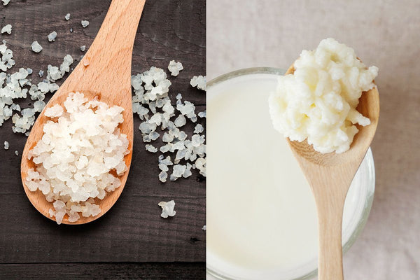 Water kefir vs milk kefir: what are the health benefits and differences?