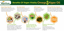 Load image into Gallery viewer, Benefits of Vegan Vitality Omega 3 Algae Oil
