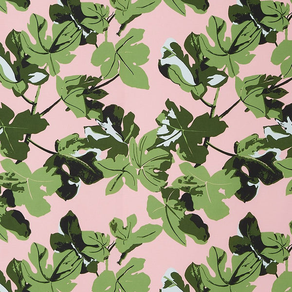 Fig Leaf - Original on Pink