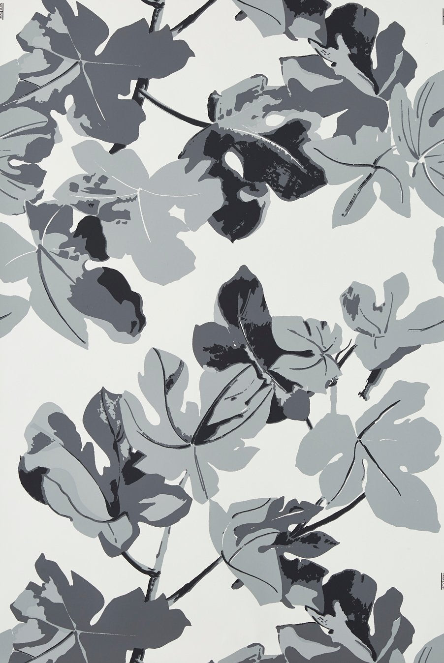 Fig Leaf - Gray on White