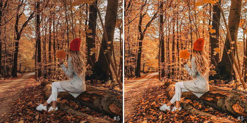 Autumn Red Presets For Fall Season In Lightroom Mobile And Photoshop Desktop